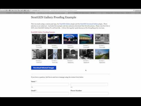Using A WordPress Photo Gallery Plugin For Client Proofing