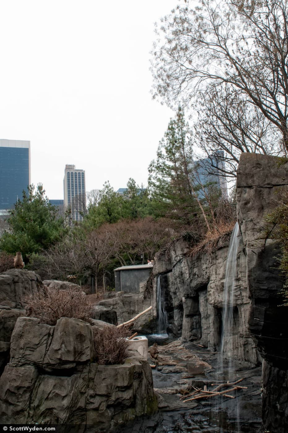 Long Exposure in Central Park: Waterfall