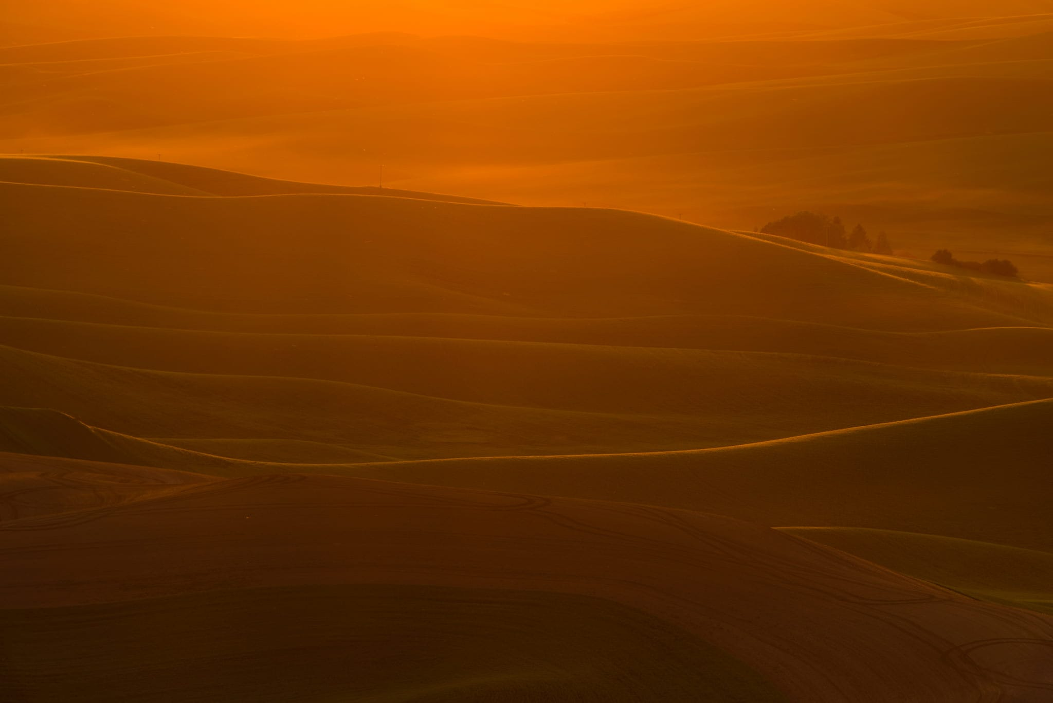 Setting Sun in Palouse