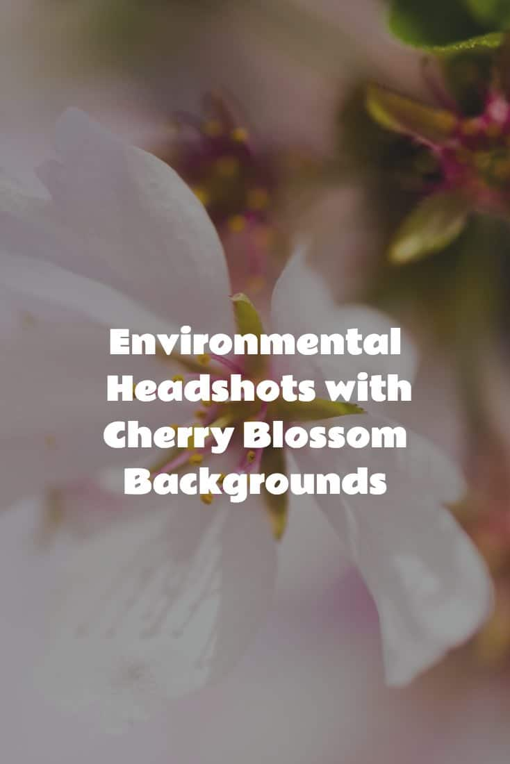 Environmental Headshots with Cherry Blossom Backgrounds